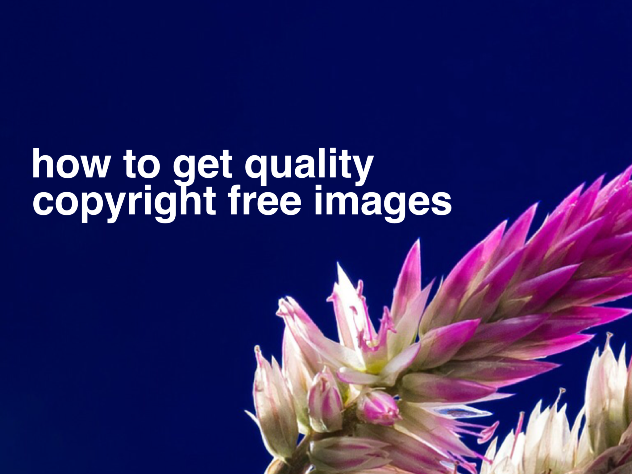 How To Get Quality Creative Commons Reuse And Free Images