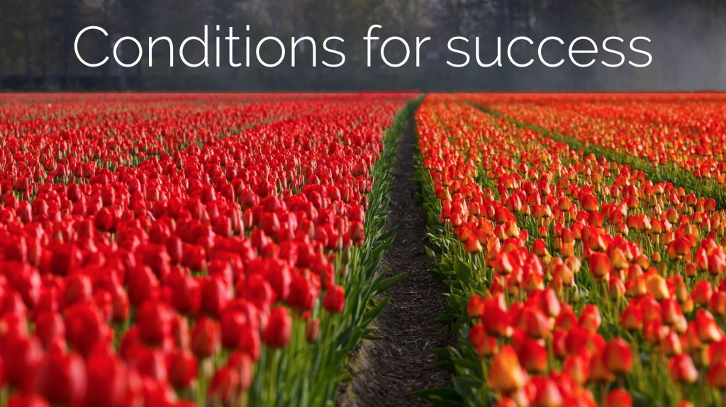 conditions for success